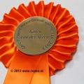 rozet-genomineerd-repko-sneek-600x399
