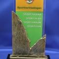 awards-sportverkiezingen-gemeente-Aalten-©-2013-repko-sneek