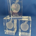 1_appeltjes-toernooi-3D-laser-gravure-NNHF-repko-sneek-kampioen