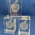 appeltjes-toernooi-3D-laser-gravure-NNHF-repko-sneek-kampioen